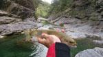 canyoning-agua-peche (5)